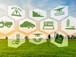 Агрономическое сопровождение хозяйств
