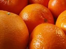 Апельсин из Турции