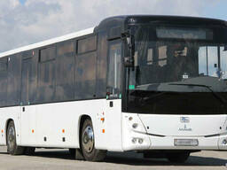 Аренда автобуса Жлобин