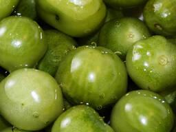 Бочковой зеленый томат (В наличии 15 тонн)