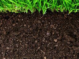 Чернозем, торфогрунт, земля, грунт, плодородка.