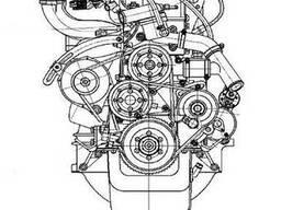 Двигатель УМЗ-4216 Газель-Бизнес