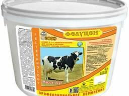 Фелуцен К1-2 Энергетический для сухостойных коров и нетелей