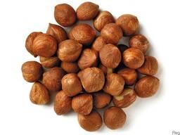 Фундук (Лесной орех, Hazelnuts)