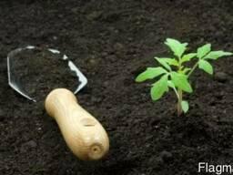 Грунт растительный на основе торфа с доставкой по 12,5 м3