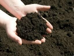 Грунт. Земля. Чернозём. Плодородный слой.