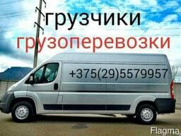 Грузоперевозки Витебск, услуги грузчиков