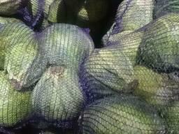 Капуста свежая