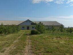 Фермерское хозяйство под Слуцком