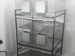Клетка для кроликовТК4-2