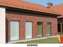 Клинкерный кирпич Roben NF38 Darwin