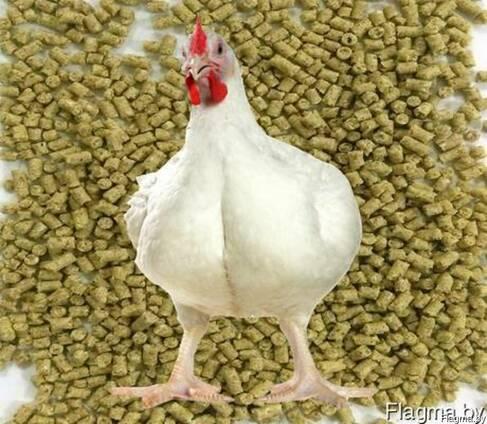 Комбикорм для цыплят бройлеров от 4-х недельи и до убоя