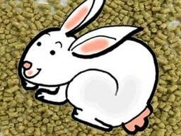 Комбикорм для кроликов КК-92-3
