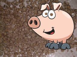 Комбикорм для свиней КК-55-с э (эконом энергия)