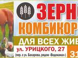 Комбикорма и зерно в Бобруйске - фото 1