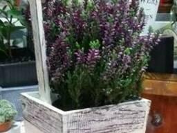 Корзины для цветов