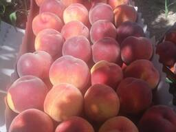 Крупные персики