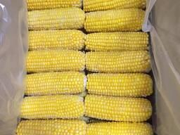 Кукуруза замороженная оптом