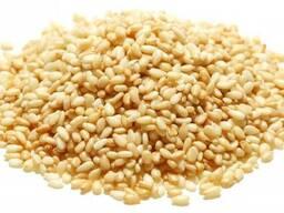 Кунжут семена (белый)