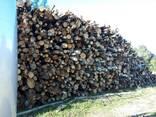 Купим дрова - фото 1