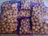 Купим картофель продовольственный 5 - фото 2