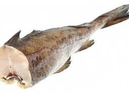 Купим рыбу свежемороженую минтай , скумбрию, сельдь, консеры