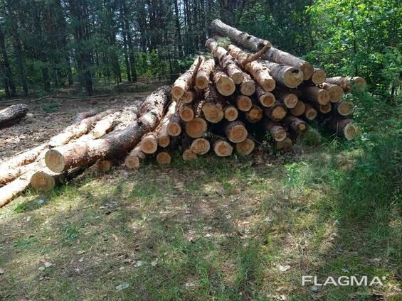 Куплю дрова березовые