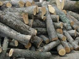 Куплю дрова Дуб, Ольха, Ясень от 2 метров