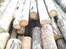 Куплю дрова круглые всех пород