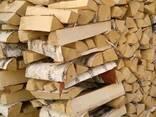 Куплю колотые дрова 5 кубов Дзержинский район деревня Гринкевичи - фото 1