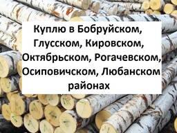Куплю кругляк березы с доставкой в г. Глуск, Бобруйск