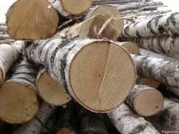 Куплю лес кругляк (пиловочник) берёза от 16 см