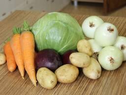 Куплю овощи на переработку