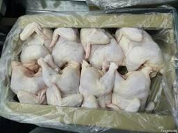 Курица Цыплята бройлерные