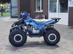 Квадроцикл MMG Coyote 125cc