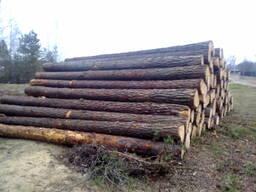 Лес кругляк для срубов