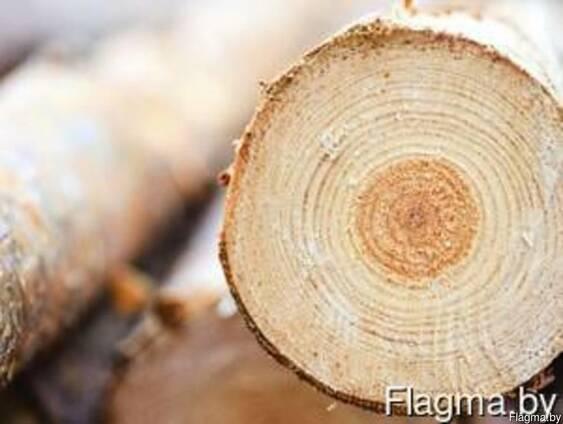 Лес кругляк, хвойных пород, берёза, ольха, дрова.