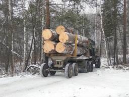 Лес кругляк техсырье