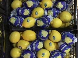 Лимон - фото 3