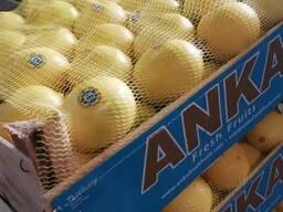 Лимон Туркций. Мерсин
