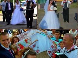 Логойск ведущий тамада дискотека баян свадьбу юбилей крестин