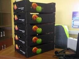 Лотки под яблоки