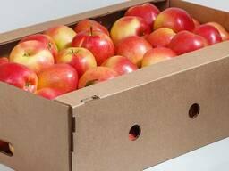 Лоток, ящики для яблок и овощей, птицы