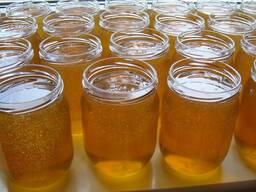 Мед пчелиный цветочный натуральный