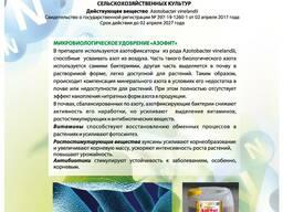 Микробиологическое удобрение Азофит
