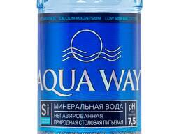 Минеральная природная столовая питьевая вода негазированная 0,5 л