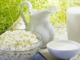 Молоко, творог, сыр, сметана