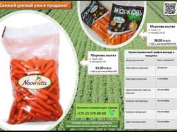 Морковь мытая фасовка 1 кг и 18 кг. Все документы.50000 тонн