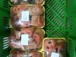 Мясные полуфабрикаты собственного производства. - photo 2