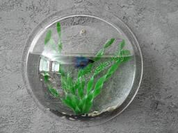 "Настенный аквариум ""Fishouse"""